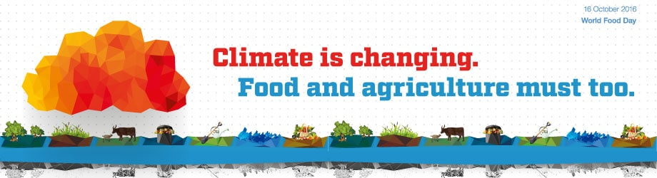 World Food DAY - Banner 2016