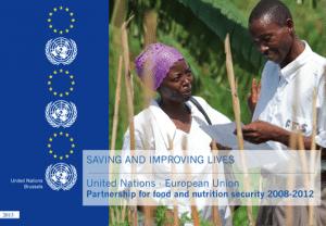 UN EU Report 2010
