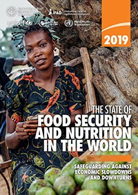 Food Security Report 2019